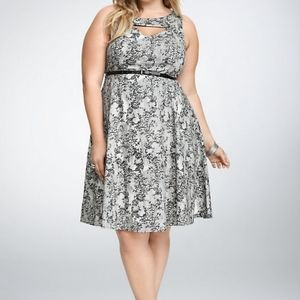Torrid Black & White Lace Print Swing Dress 20